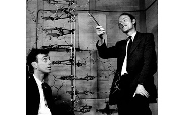 how did james watson and francis crick meet