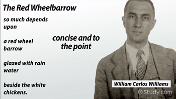 the use of force william carlos williams summary