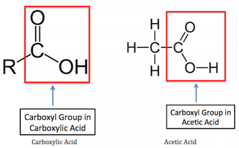 What is Acetic Acid? - Uses, Structure & Formula - Video