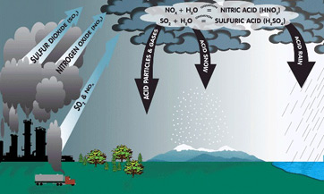 acid rain effects \u0026 causes video \u0026 lesson transcript study com