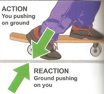 Action and Reaction Forces: Law & Examples - Video & Lesson