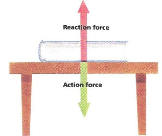Action And Reaction Forces Law Amp Examples Video