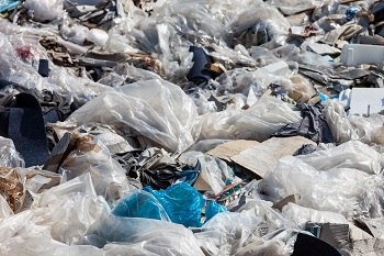 Which Countries Have Banned Plastic Bags Study Com