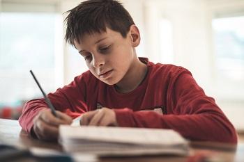 Lapl homework help youth