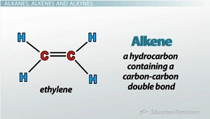 Organic Molecules: Alkanes, Alkenes, Aromatic Hydrocarbons and