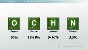 Composition of living organisms