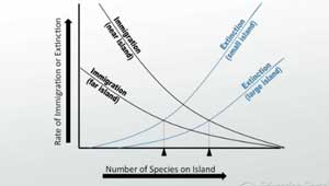 Dispersal, Colonization, and Island Biogeography - Video & Lesson ...