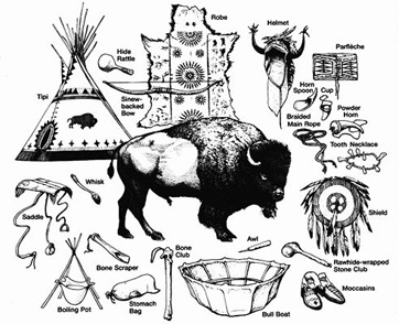 The Blackfoot used all parts of the Buffalo