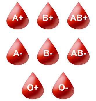 Blood Type: Lesson for Kids   Study com