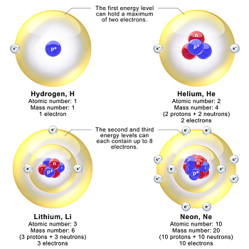 Niels Bohr Biography Atomic Theory Discovery Study