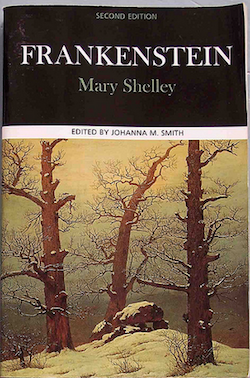 the responsibility of the creator in the novel frankenstein by mary shelley Mary shelley's beautifully written novel begins in the bleak north pole, on a boat trapped in ice with a crew almost certain to die it is there that captain robert walton finds victor frankenstein.