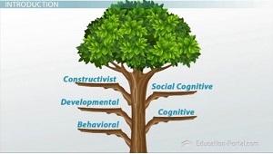 what are the major branches of psychology