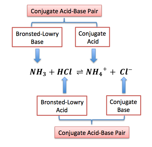 bronstedlowry acid definition amp examples video