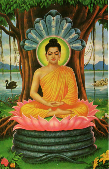 who is buddha the enlightened one history concept study com
