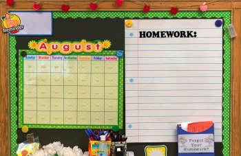 A bulletin board in your homeschool room can display lesson ideas and reminders.