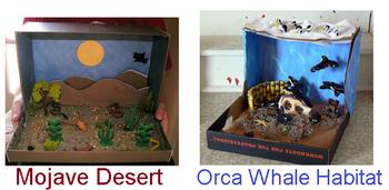 Literature Circle Project Ideas & Rubric | Study com