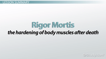 Rigor mortis definition