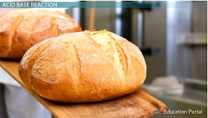 Carbon Dioxide Makes Bread Rise