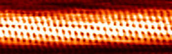 A network of carbon atoms is visible in this image of a carbon nanotube