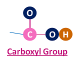 Carboxyl group structure