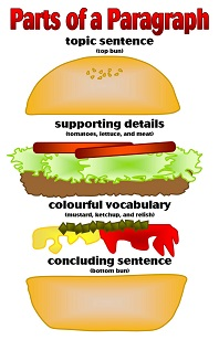 Teaching Paragraph Structure to ESL Students   Study.com
