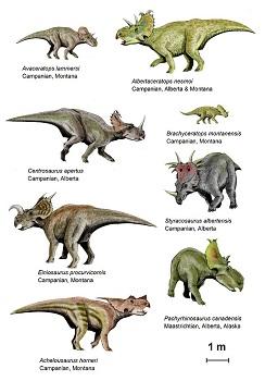 Herd Of Troodon Dinosaurs