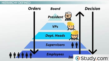 Organizational Chart And Hierarchy Definition Examples Video