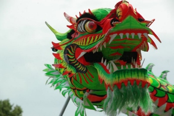 chinese new year dragon facts lesson for kids study com
