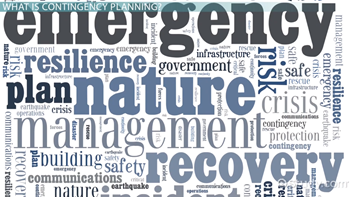 What Is Contingency Planning in Business? - Definition