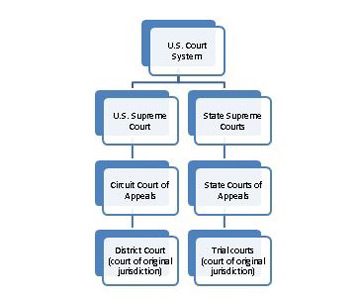 study cases law