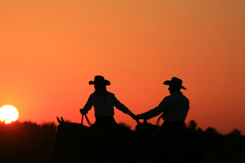 Where Have All The Cowboys Gone: National Cowboy Poetry Week