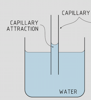 Surface Tension, Capillary Action, Viscosity & Physical Changes ...