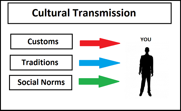 cultural transmission theory How can the answer be improved.