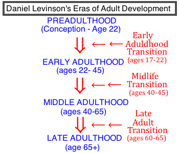 Remarkable, the daniel levinson adult development theory