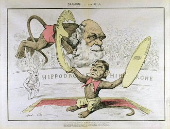 social darwinism significance movement com darwin misrepresented