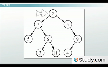 example of a data tree