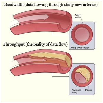 Bandwidth vs  Throughput | Study com