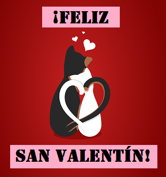 Spanish Valentine S Day Words Phrases Study Com