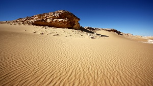 Desert Biomes: Facts, Climate & Locations - Video & Lesson ...