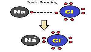 What is salt in chemistry definition formula video lesson diagram of ionic bonding in sodium chloride urtaz Images