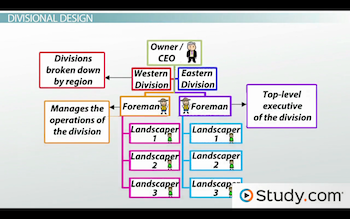 divisional organisation structure