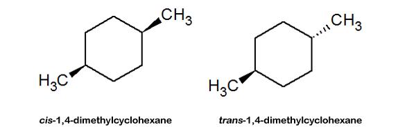 Geometric Animal Drawing Stereoisomers: Definit...
