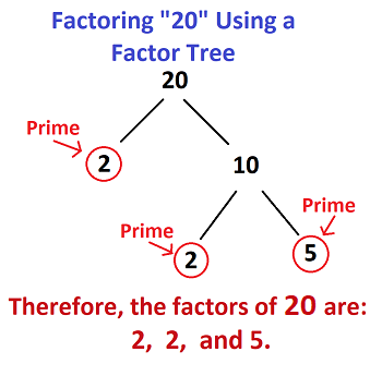what is the square root of 20? | study