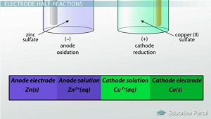 Cathode and Anode Half-Cell Reactions - Video & Lesson Transcript