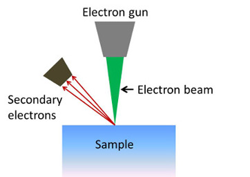 What is an electron microscope definition types uses study a scanning electron microscope focuses a beam of electrons on the surface of a sample secondary electrons are emitted from the sample surface ccuart Choice Image