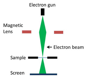 What is an electron microscope definition types uses study null ccuart