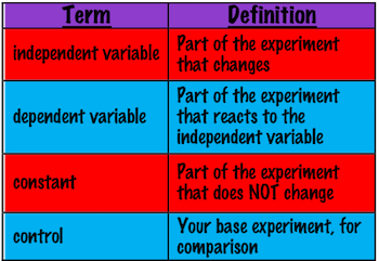 What Is A Constant In Science Lesson For Kids Study Com