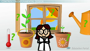 Experimental Design in Science: Definition & Method - Video ...
