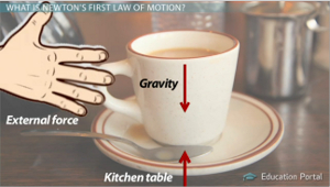 Newtons First Law Of Motion Examples In Everyday Life ... C Cup Example