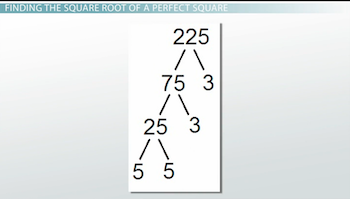 Evaluating Square Roots Of Perfect Squares Video Lesson Transcript Study Com Ready for big time challenge? evaluating square roots of perfect